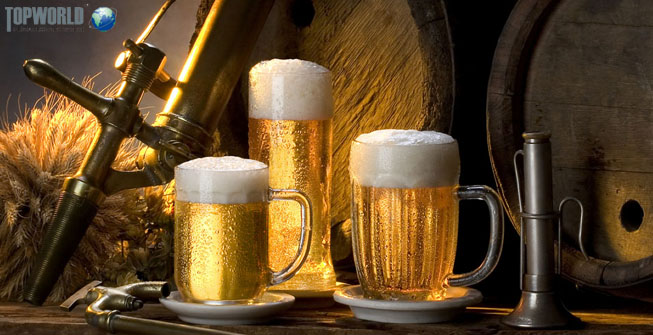 德国进口,进口啤酒,空运进口,进口清关,特普沃德国际物流