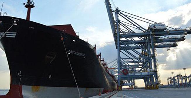 海运,特普沃德国际物流,空运