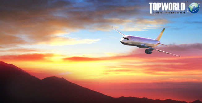 空运进口,空运,进口,全程进口