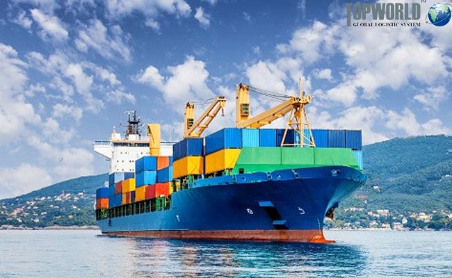 海运出口,靠谱货代,上海进出口物流