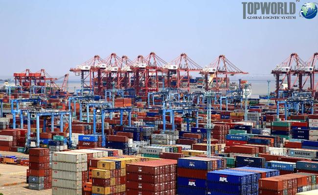宁波舟山港,海运出口,门到门进口,进口靠谱货代