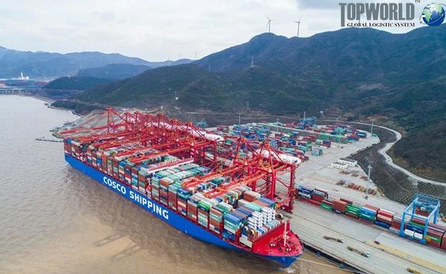 中远海运集运实时限硫令