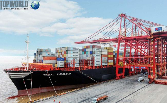 出口企业风险图