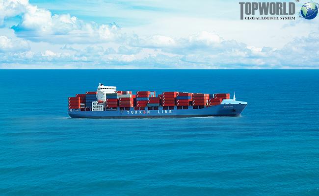 海运拼箱,海运整箱,海运出口,进出口物流,上海进口货代
