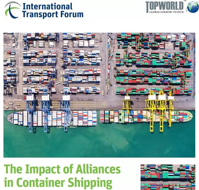 航运联盟影响的专题报告