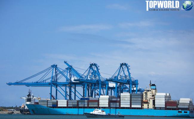 海运出口,海运进口货代,上海海运出口,门到门进口