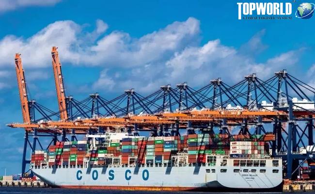 鹿特丹港,进出口物流,上海空运货代