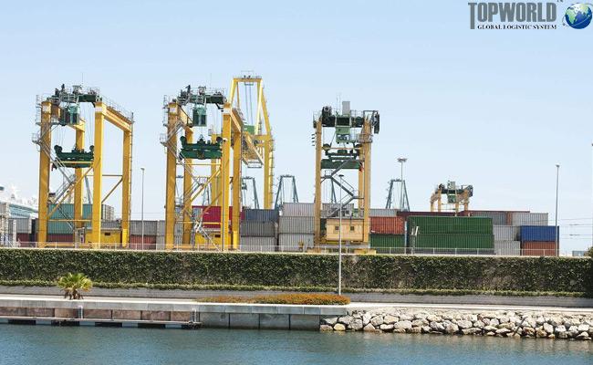 上海外港、洋山港拟定12月20日出口新舱单上线