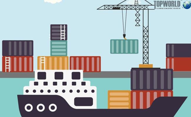 前11个月上海关区进出口同比增长